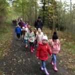 Hamsterley Forest – Year 1